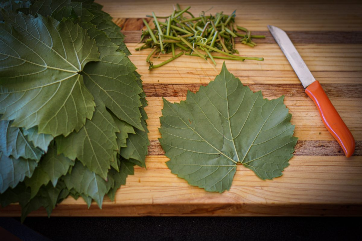 Take a single grape leaf and place vein side up on a chopping board. With a sharp knife, cut off the hard stem and place 1 tablespoon of the mixture onto the grape leaf. Fold the stem end over and then fold the sides in towards the centre. Continue to fold over again, to create a small square or roll and place seam side down into the prepared pan, on top of the unstuffed leaves. Repeat the process, arranging the rolled dolmeh in tight layers.